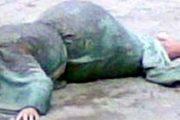 عاجل :مقتل ربة منزل على يد عامل حاول التعدي عليها جنسيا بالشرقية