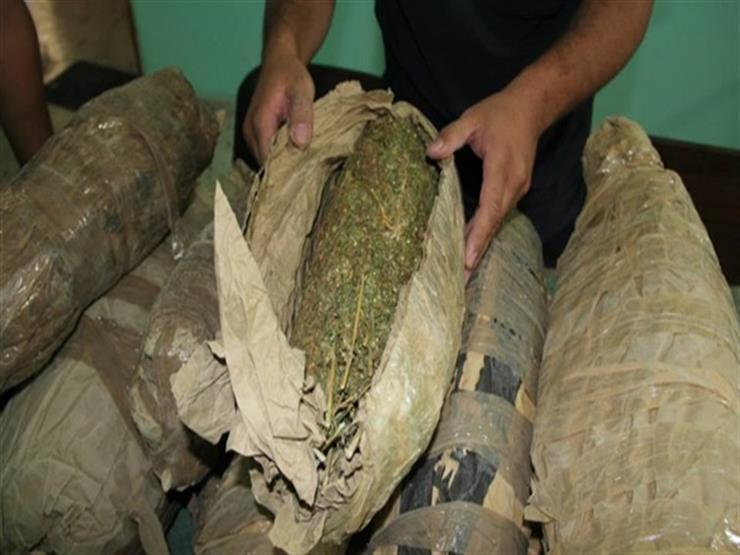 ضبط عاطل وبحوزته ( 6 ) كيلو جرام  من نبات البانجو المخدر وسلاح ناري بفاقوس - شرقية