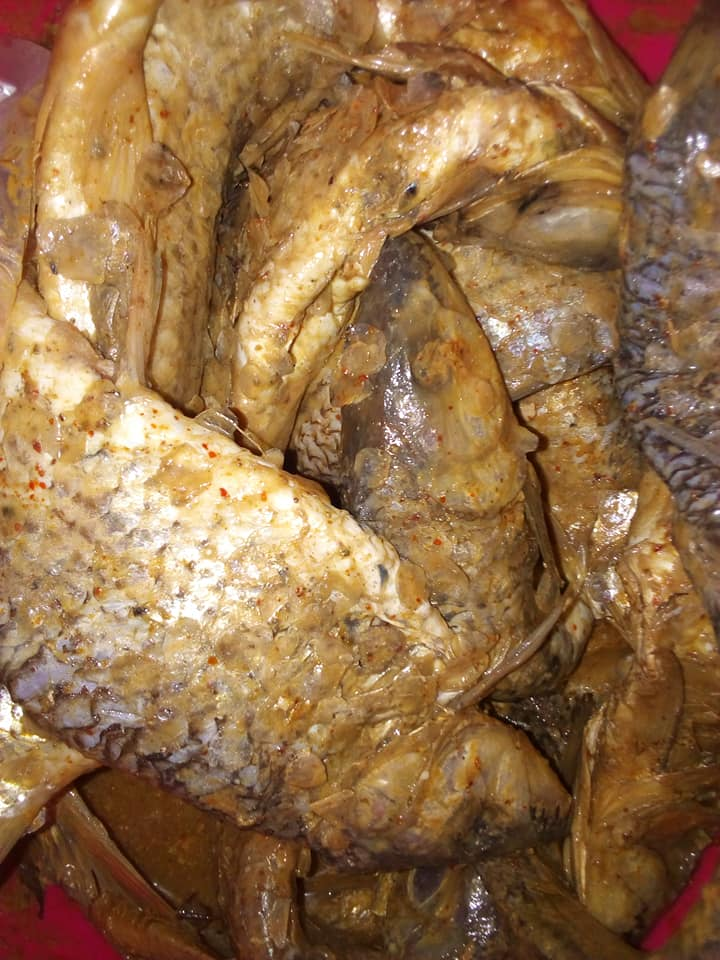 قبل أحتفالات شم النسيم ضبط كميات من الفسيخ المملح تالفه وغير صالح للاستهلاك الادمى وممتلئة بالديدان بحى ثانى الإسماعيلية .