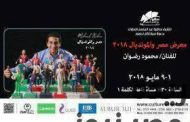 معرض مصر والمونديال للفنان محمود رضوان بساقية الصاوي