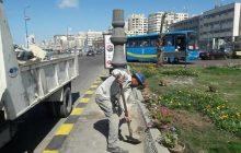 رفع المخلفات من حديقة النصب التذكاري للشرطة بمدخل اسكندرية الصحراوى.