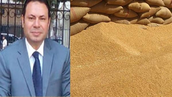 وكيل لجنة الزراعة: تحديد 600 جنيه لإردب القمح سعر عادل للمزارعين