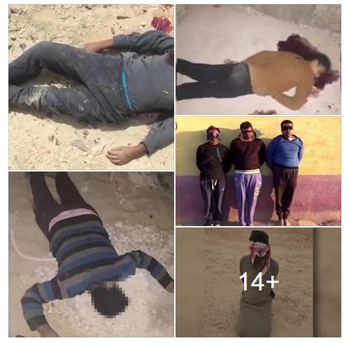 بالصور:البيان التاسع عشرللقوات المسلحة المصرية بشأن العملية الشاملة «سيناء 2018»