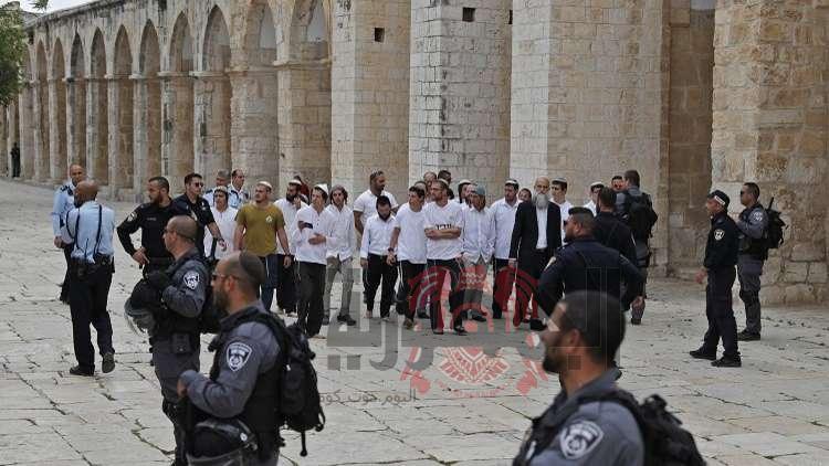تحت حماية جيش الاحتلال .. مستوطنين يهود يقتحمون المسجد الاقصي في اكبر عملية اقتحام منذ حرب 67