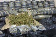 ضبط عاطلان وبحوزتهما كميه من نبات البانجو المخدر وسلاح ناري بمشتول السوق-شرقية