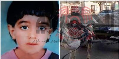 بالصور...مصرع طفل اسفل عجلات الكارو بقرية العرين بأبوكبير شرقية