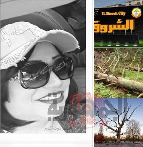 نورا الشناوي تكتب..ملايين مهدرة كتبت